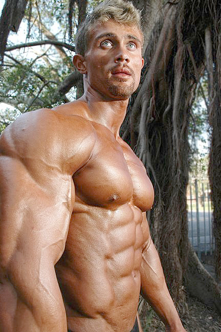 gay blonde muscle tumblr